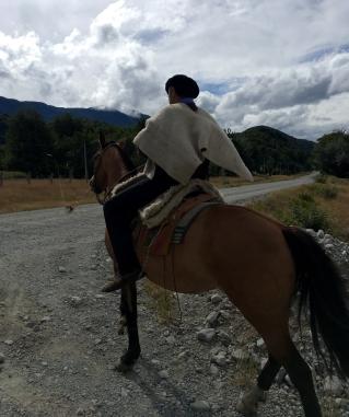 Das Pferd als Fortbewegungsmittel