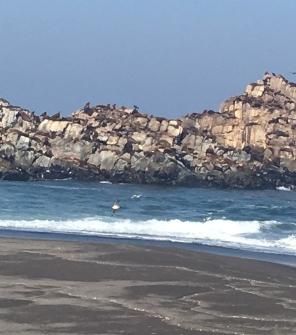 unberührte Strände am Pazifik